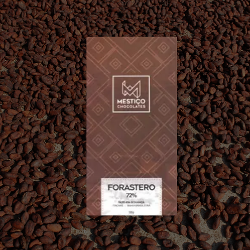 Chocolate Bean To Bar - Forastero (25g)