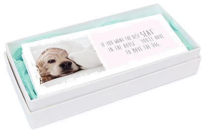 box hond.jpg