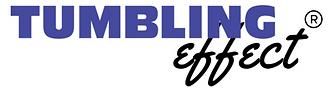 TE logo TM.png