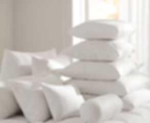 down-feather-pillow-insert-c.jpg