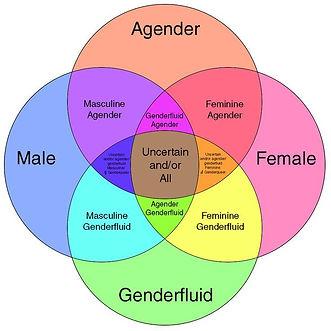 gender fluidity.jpg