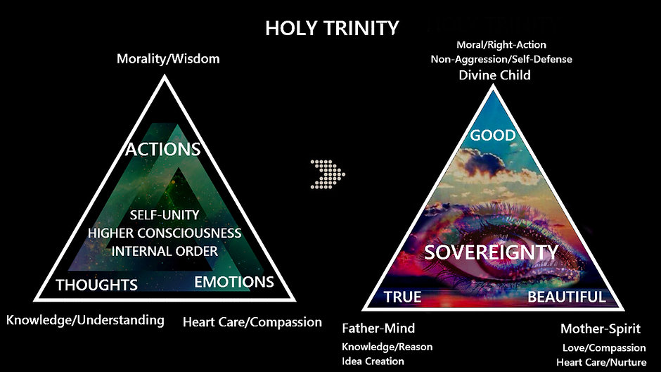 Sovereignty_higher consciousness11.jpg