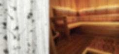 Sauna, finnleo