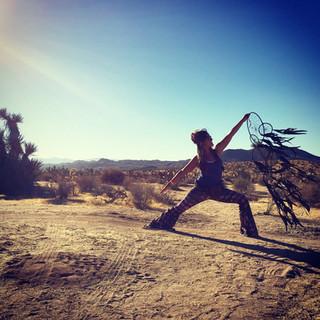 Dream in the desert