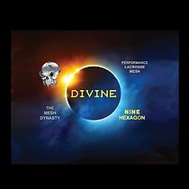 Divine_Nine_Hexagon-01_2_300x300.png