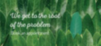 NAVEDA Website Banners-02.png