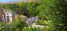 el jardín le da la bienvenida a su llegada