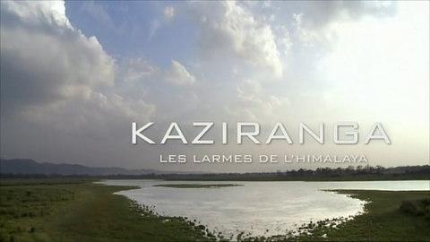KAZIRANGA, les larmes de l'Himalaya