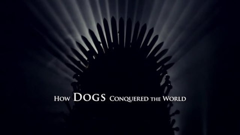 HOW DOGS CONQUERED THE WORLD