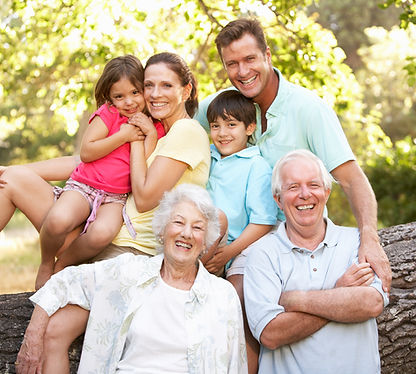 Portrait Of Extended Family Group In Par