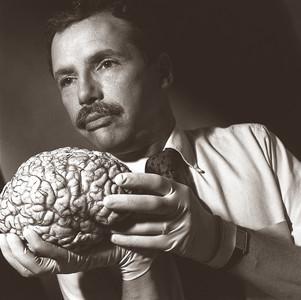 Brain Surgeon, New York