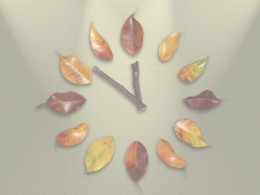 Fall Back Preparedness Guide: Are you Ready to Fall Back?