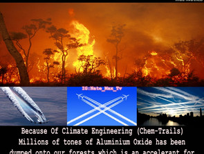 Climate Engineering creating the hottest forest fires on record