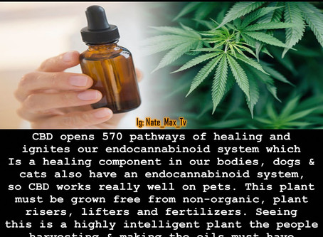 CBD Opens 570 pathways of healing but synthesized CBD from big Pharma is proving to be a real doozie