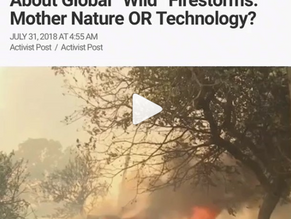 """Questions Need To Be Asked About Global """"Wild"""" Firestorms: Mother Nature OR Technology"""