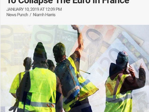 Yellow Vests Planning a Bank Run To Collapse The Euro In France