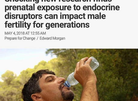Depopulation already unleashed: Shocking new results finds prenatal exposure to endocrine disruptors
