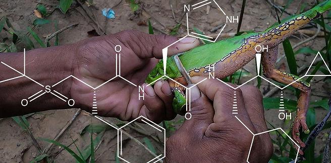 Kambo-Peptide.jpg