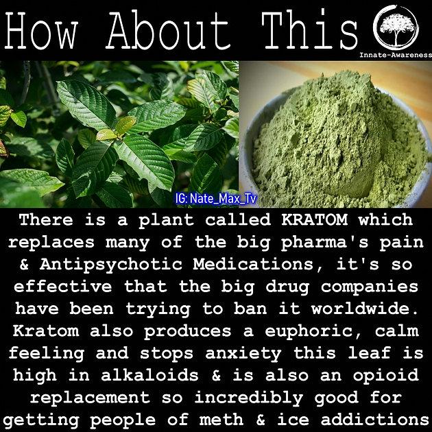 Super Food that replaces big pharma drugs    No wonder they