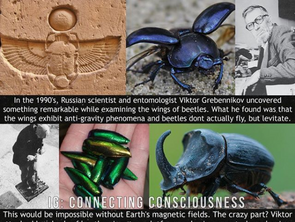 """Anti Gravity Beetle Technology """"Mother Nature Has Everything We Need"""""""