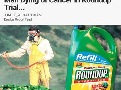 MONSANTO Squares Off With Man Dying of Cancer In Roundup Trial..