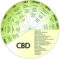 CBD_8.jpg