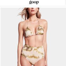 GOOP.COM - CALi DREAMiNG Aries & Phoenix bikini
