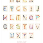 ALPHABET Limited Edition Poster
