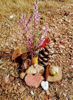 nature altar