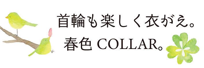 春色collar.jpg