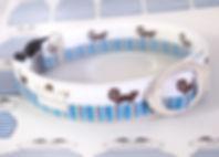 うずまき猫ブルーimage01.jpg