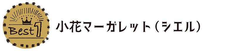 R_小花マーガレット文字.jpg