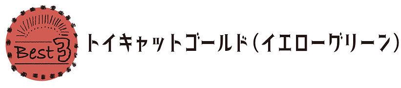 R_トイキャットグリーン文字.jpg