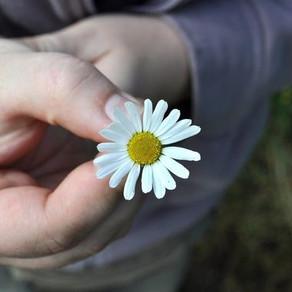 Vivre la gratitude en relation