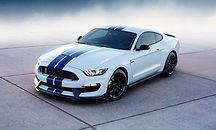 Mustanghdok3.jpg
