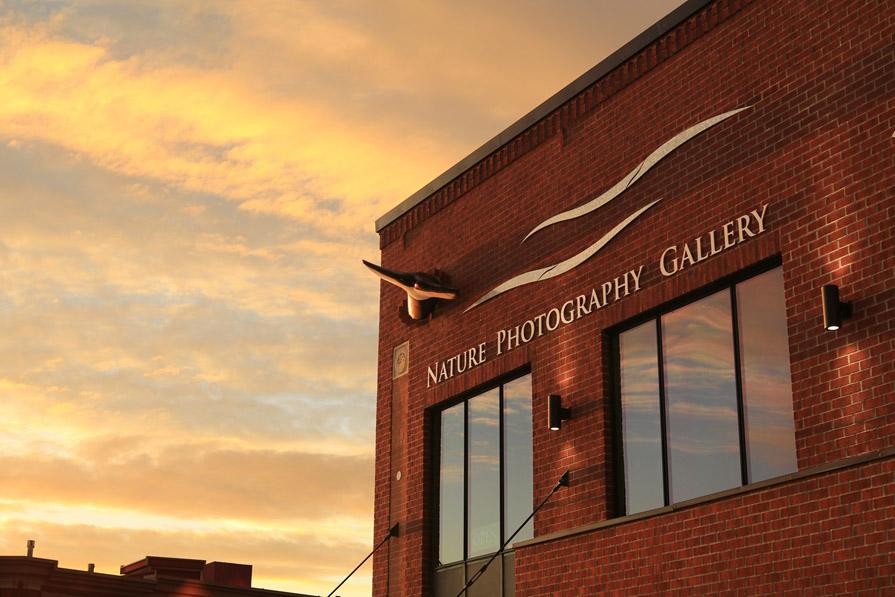 Art Gallery near Seattle & Vancouver