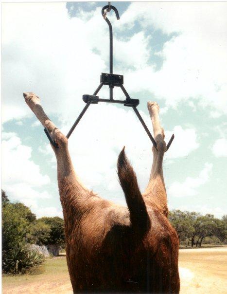 T-Hanger animal