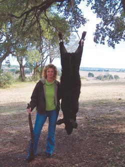 T-Hanger Hog