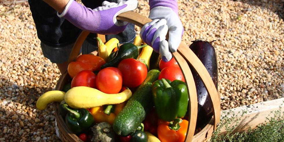 Veggie Gardener's Post-Season Seminar & Celebration