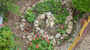 Permaculture is good for gardens, AND it can change communities, companies, and countries!!