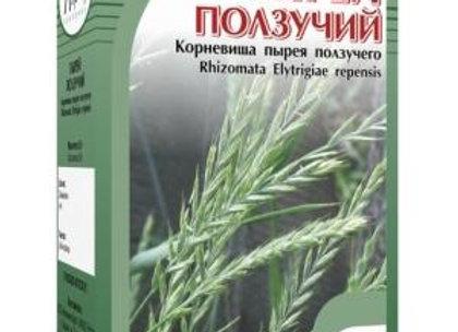 Rhizomata Elytrigiae repensis (ПЫРЕЙ ПОЛЗУЧИЙ)