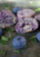 Blåbär-citrontimjan biscotti.jpg
