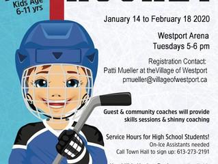 Kids Shinny Hockey Program is Back and it is Free!