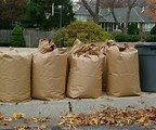 2019 Yard Waste Pick-Up Day is Here