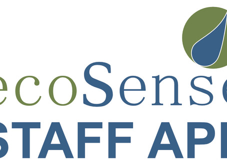 ecoSense Leading the way with innovation