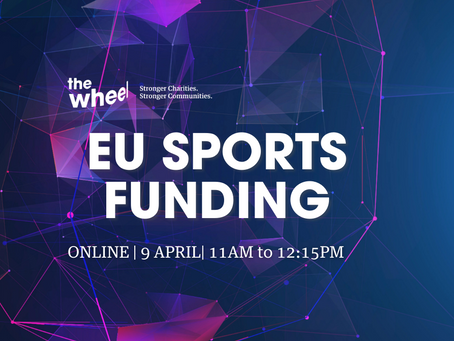 EVENT: Introduction to EU Funding for Sport Bodies (Online Workshop)
