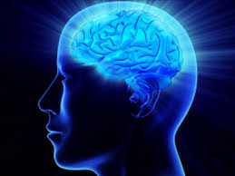 This is your brain...this is your brain on exercise...any questions? (Part 1)