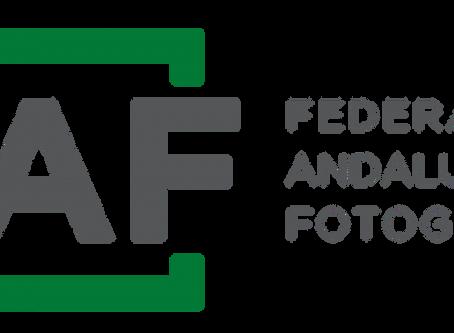 Información sobre la IV Liga FAF