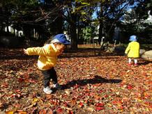 落ち葉の上でジャンプ