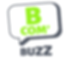 bcom'buzz, bcombuzz, communication, marketing, guérande, la baule, loire atlantique,